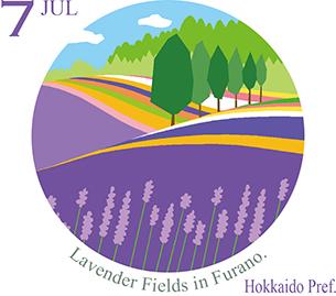 富良野のラベンダー畑(北海道)